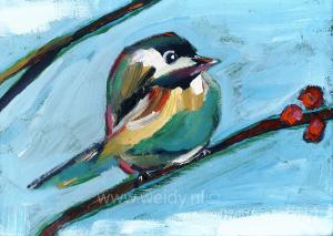 vogel 17
