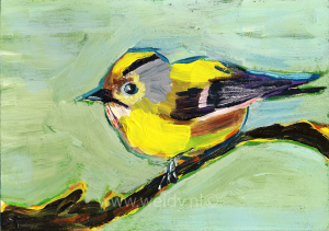 vogel 24