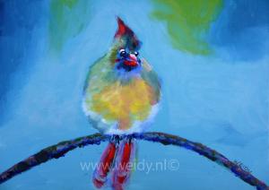 vogel 29
