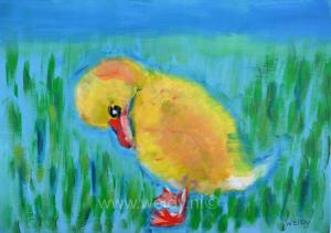 vogel 34
